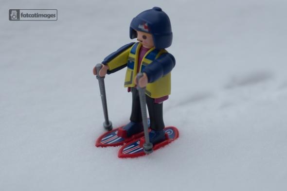 Snow Shoer-1